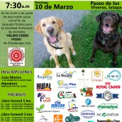 Zihuatanejo Animal Shelter 2012 Achievements