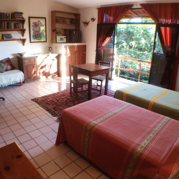 Anacahuite Tamarindo Zihuatanejo rentals