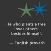 Garden Quotations