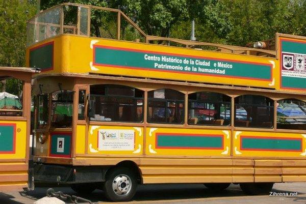 Mexico S On Line Travel Tools Zihrena S Garden